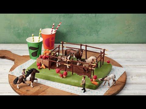 Rezept: Pferdekoppel-Geburtstagskuchen von Dr. Oetker