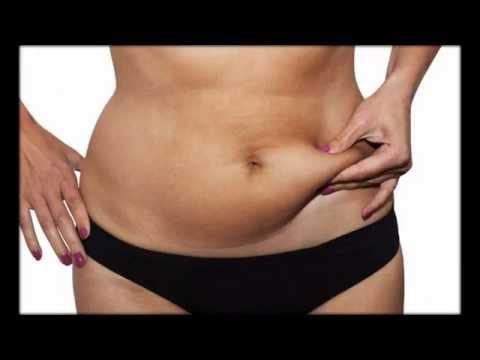 Как сбросить вес чихуахуа
