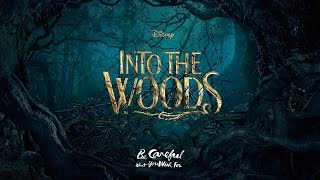 INTO THE WOODS - On the Steps of the Palace (KARAOKE) - Instrumental with lyrics on screen