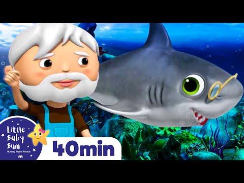 Baby Shark Dance   + More Nursery Rhymes & Kids Songs   Songs for Kids   Little Baby Bum