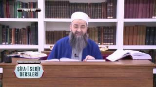 Efendimiz Sallallâhu Aleyhi Ve Sellem'in Hayvanlara Şefkati