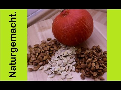 Kürbiskerne verarbeiten: Rezept in 3 Varianten! (Dörrgerät und Ofen), geröstete Kürbiskerne Hokkaido