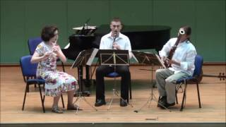 Kummer - Trio for Flute, Clarinet and Bassoon, Op. 32 - 1st mvt.