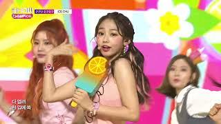Show Champion EP.242 gugudan OGUOGU - ICE CHU [구구단 오구오구 - 아이스 츄]