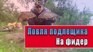 Рыбалка вязьма бозня