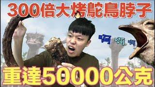 【狠愛演】300倍大烤鴕鳥脖子,重達50000公克『一輩子沒吃過』
