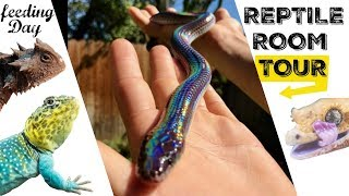 CHRIS'S REPTILE ROOM TOUR & FEEDING!!