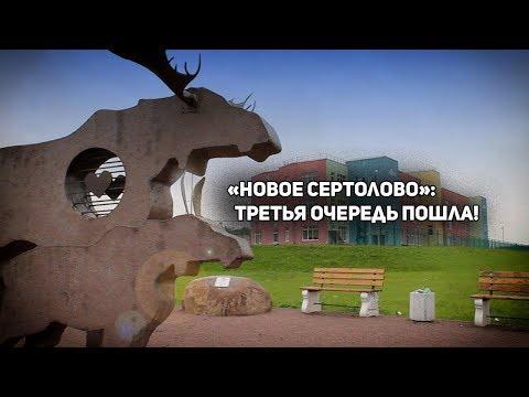 Где под Петербургом жить хорошо
