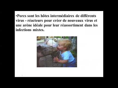 Tratamiento contra parasitos oxiuros