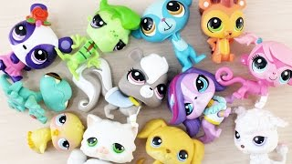 My LPS collection so far + Opening our new Runway Pets Collection - simplekidscrafts