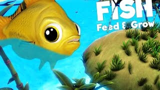 GOLDFISH VS WORLD! (Feed And Grow)