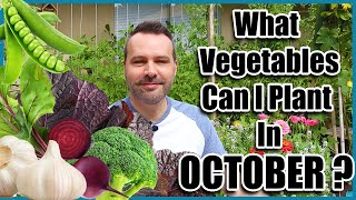 What Can I Plant in October? Cold Hardy Vegetables.