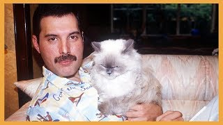 Interesting Facts About Freddie Mercury