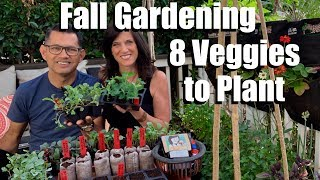 How to Start a Fall Vegetable Garden - 8 Seeds to Plant / Fall Garden Series #1 🍁🥦🍁🌿