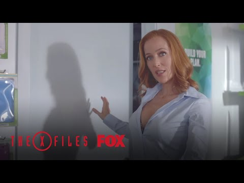 Video didattici, il sesso orale scaricare