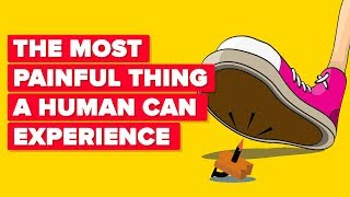 The Most Painful Things A Human Can Experience #2