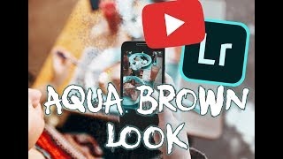 HOW To ACHIEVE The AQUA BROWN Look