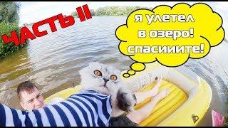С котом вход разрешен! | Кевин улетел в озеро! Потеряли кота?