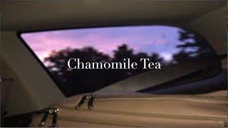 Chamomile Tea - Clare Palmer