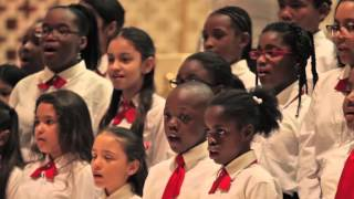 About Seraphic Fire's Miami Choral Academy