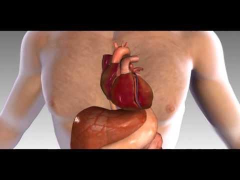 Lidová úprava krevního tlaku