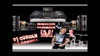 Dj Gökhan Feat Ismail Yk Ah Leylim Remix