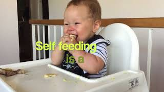 Top Tips For Feeding A 6-8 Month Baby Finger Foods