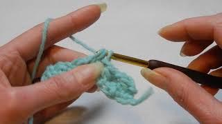 Crochet Dishcloth / Washcloth Stitch Tutorial