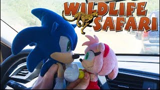 Sonic Goes to the Wildlife Safari | ft. Sonic and Amy!