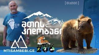 """""""მთის კიდობანი"""" - ტყვე დათვები"""
