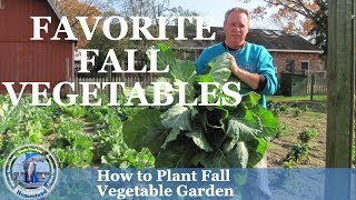 How To Plant Fall Vegetable Garden & Our Favorite Vegetable