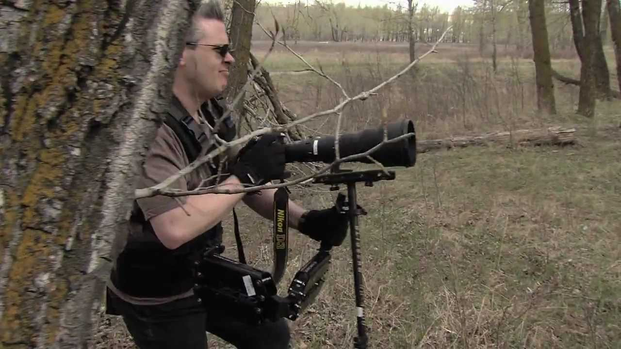 In An Alternate Dimension, Photographers Are Trained Killing Machines