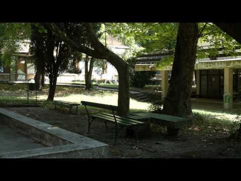 Lumix-GH4-Scene-2