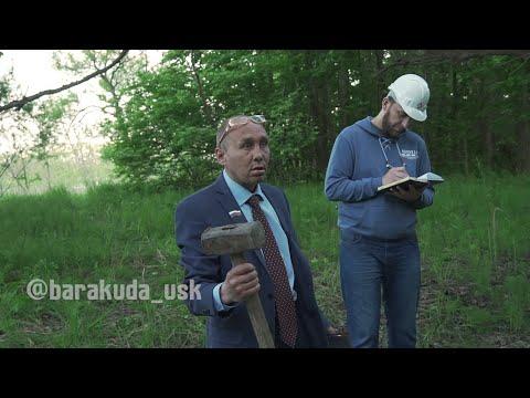 Виталий Наливкин остановил вырубку леса