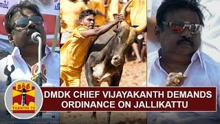 DMDK Chief Vijayakanth Demands Ordinance On Jallikattu  Thanthi TV