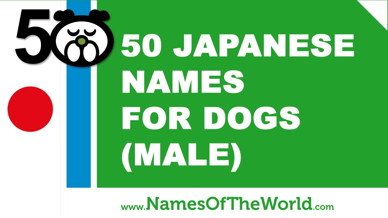 50 japanese names for male dogs -  best dog names - www.namesoftheworld.net