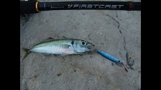 Рыбалка на тарханкуте с берега