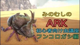 Ark フンコロガシ