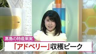 6月20日 びわ湖放送ニュース
