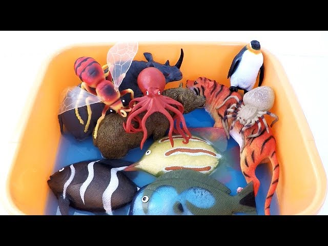 Learn Sea Animal Names and Lots of Zoo Wild Animals in Blue Water Shark Toys Safari Videos For Kids