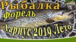 Река волочаевка ленинградская область рыбалка