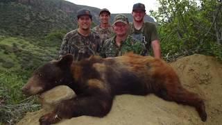 New Arizona Black Bear Hunt Film