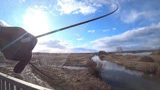 Паук для ловля карася на поплавочную удочку 2020