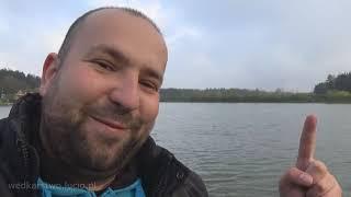 Jesiotr i karasie na pellet Łowca ochotka 12 mm - wędkarstwo feeder
