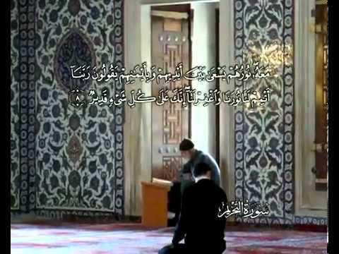 Сура Запрет <br>(ат-Тахрим) - шейх / Мухаммад Айюб -