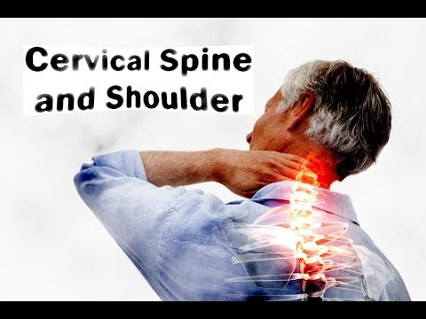 Cervical spine and shoulder