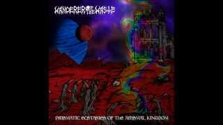 Wanderer of the Waste - The Ruins of My Anguished Past