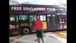 SINGAPORE FREE TOUR ON TRANSIT HOW TO DO?