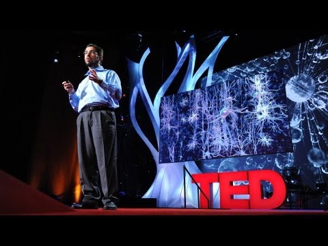 A light switch for neurons – Ed Boyden