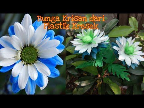 DIY Bunga Krisan dari Plastik Kresek - DIY Chrysanthemum flower with plastic bag